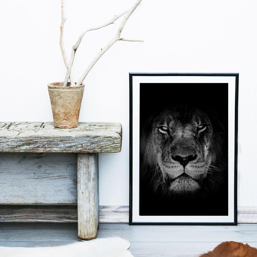 poster leeuw zwart wit
