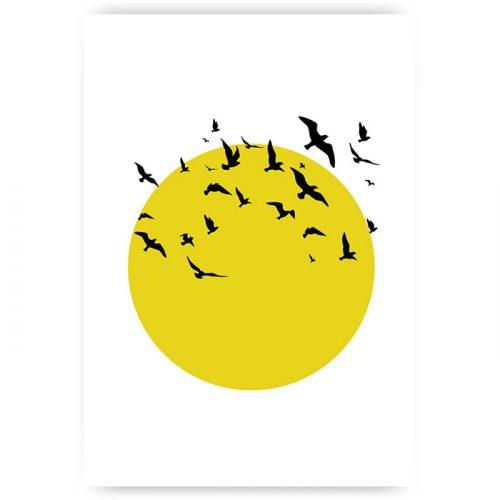 Muurposter zon met vogels