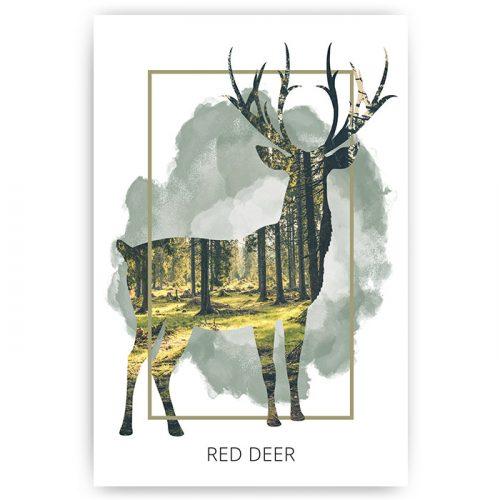 poster hert