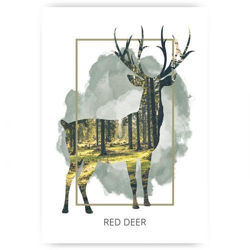 Poster red deer
