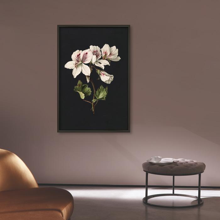 poster witte bloem vintage