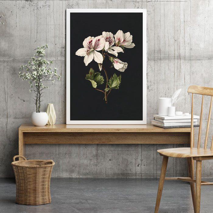 poster witte bloem