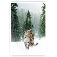 muurposter panter sneeuw