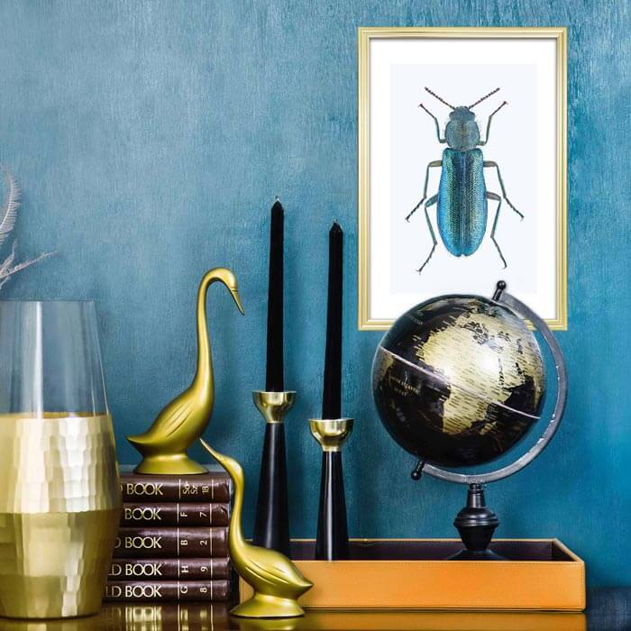 poster insect kever blauw