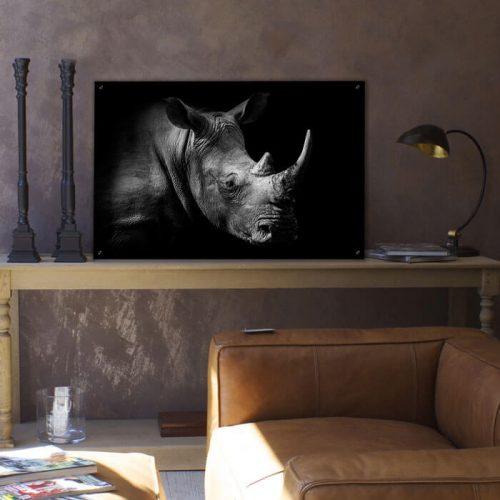 poster neushoorn zwart wit