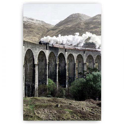 poster trein landschap