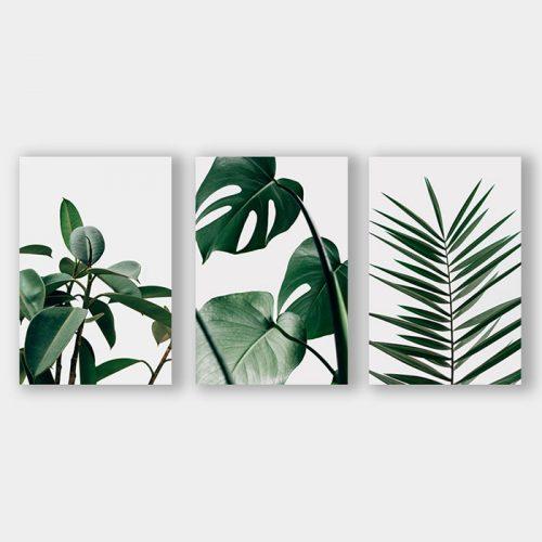 poster set planten bladeren
