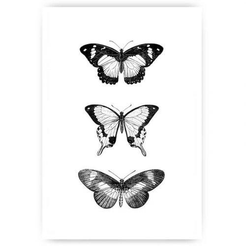 muurposter drie vlinders zwart-wit