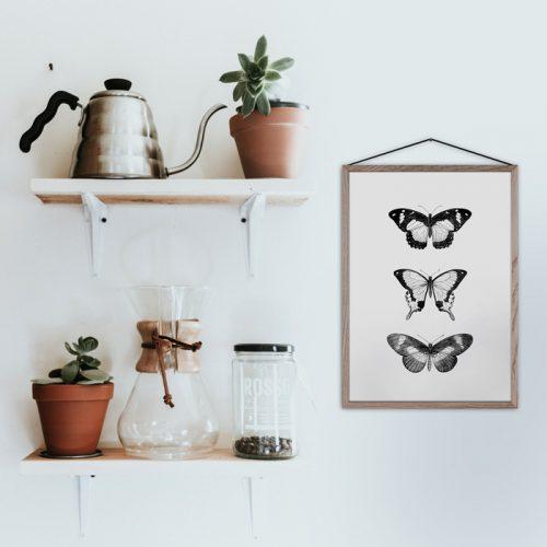 poster drie vlinders vintage