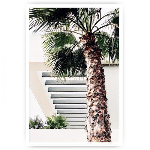 muurposter palmboom bij gebouw