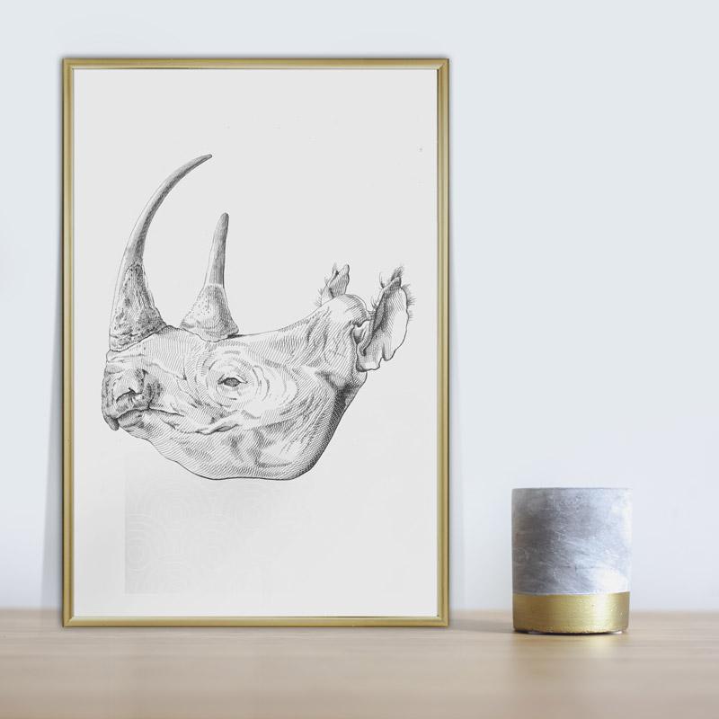 poster illustratie neushoorn