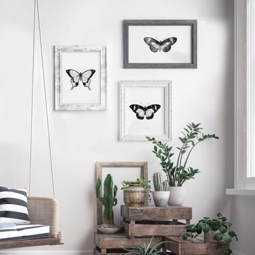 posterset vlinders zwart-wit