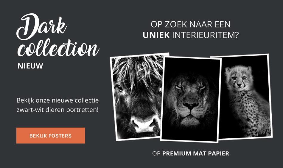 dark collection zwart wit posters dieren