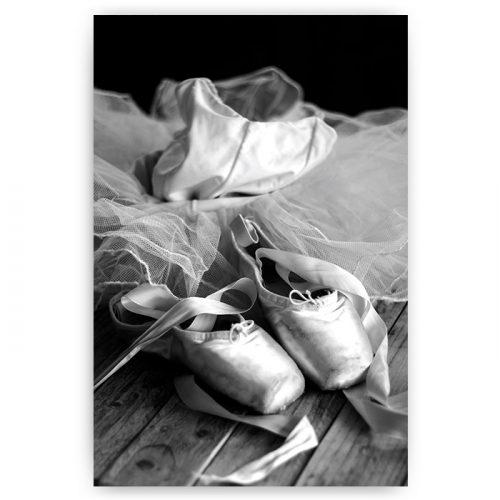 poster ballet schoentjes