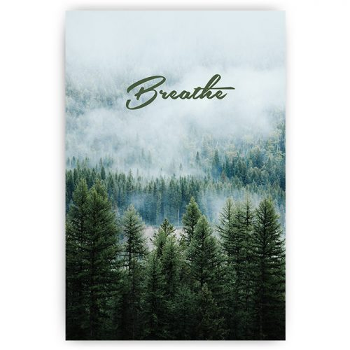 Poster breathe adem bos forest