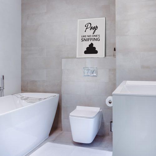 poster poep poop tekst