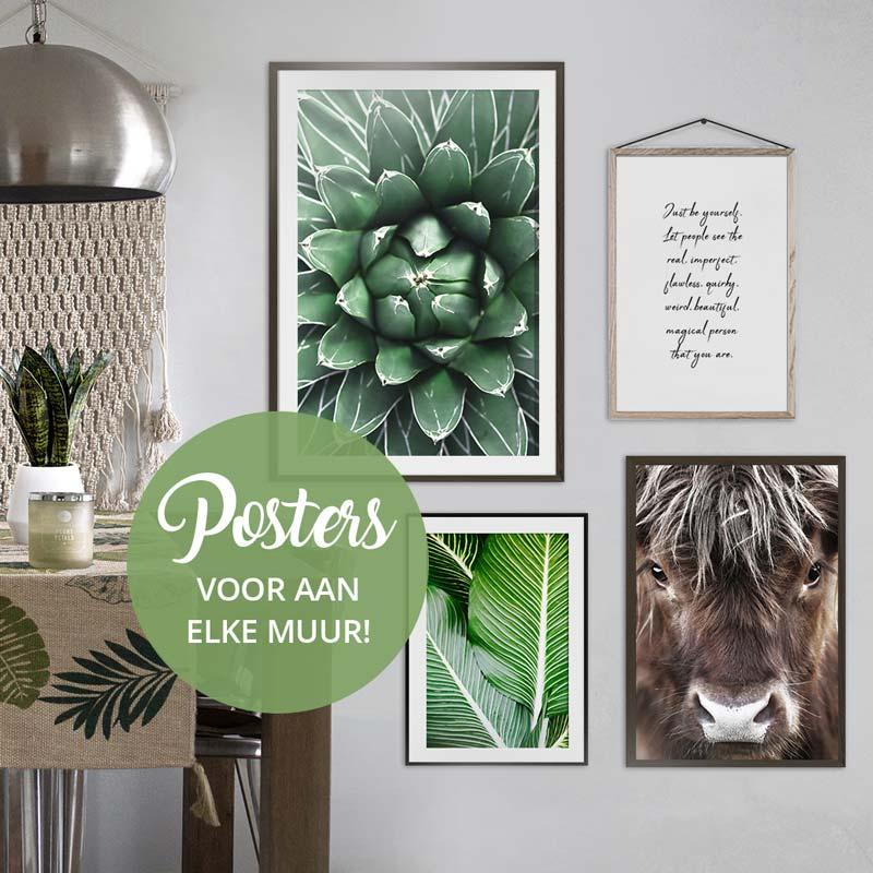 posters natuur dieren