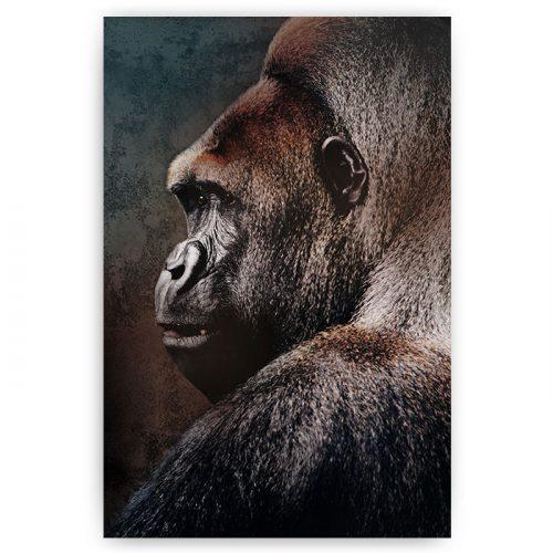poster vintage gorilla kleur