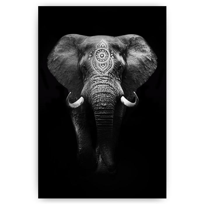 poster boho olifant zwart wit - sfeer aan de muur