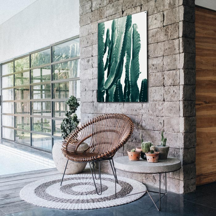 poster cactus op wit