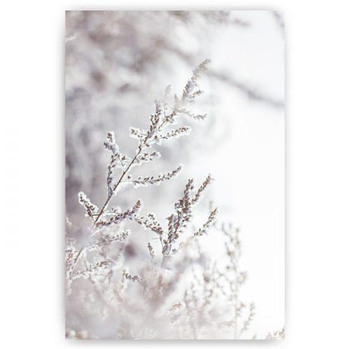 poster sneeuwlandschap