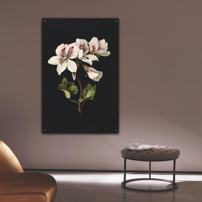 poster wanddecoratie dibond