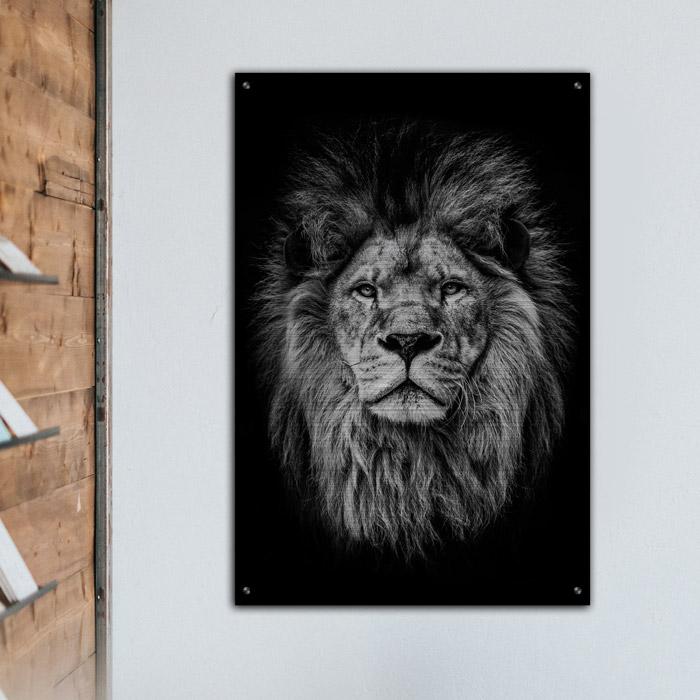 poster leeuw aluminium
