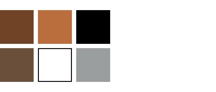 kleuren woonkamer bruin