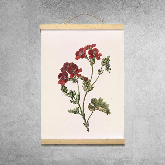 poster bloem aan posterhanger met latjes