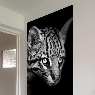 forex foto poster groot aan de muur