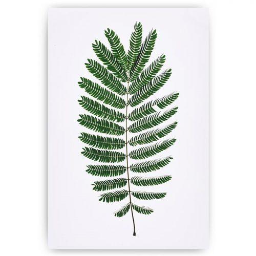 poster groen blad