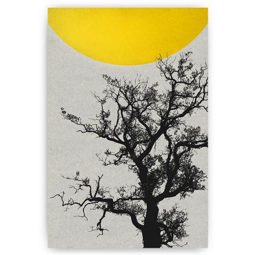 poster landschap boom met zon