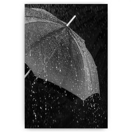 poster paraplu regen