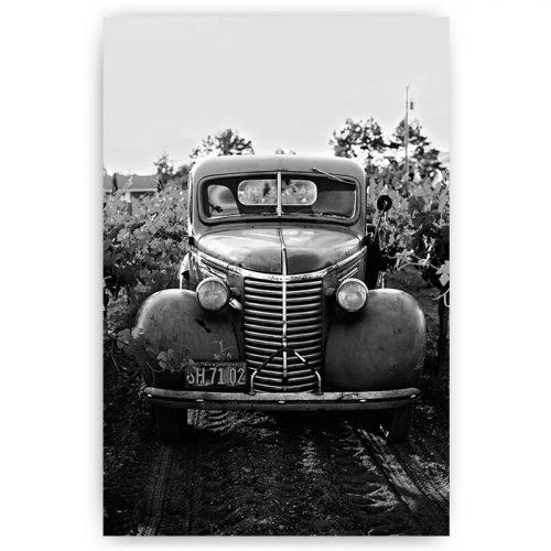 poster auto zwart wit