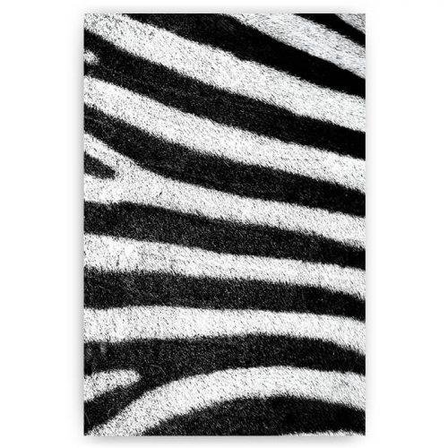 poster zebra vacht dierenprint