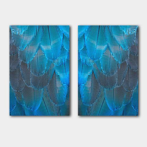 poster set blauw gekleurde veren