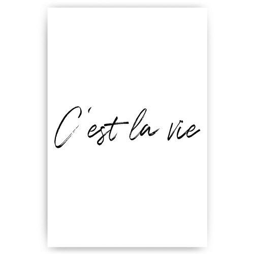 poster print c'est la vie