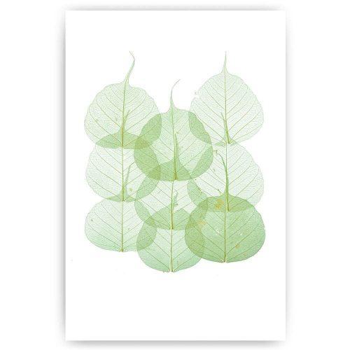 poster groene blaadjes