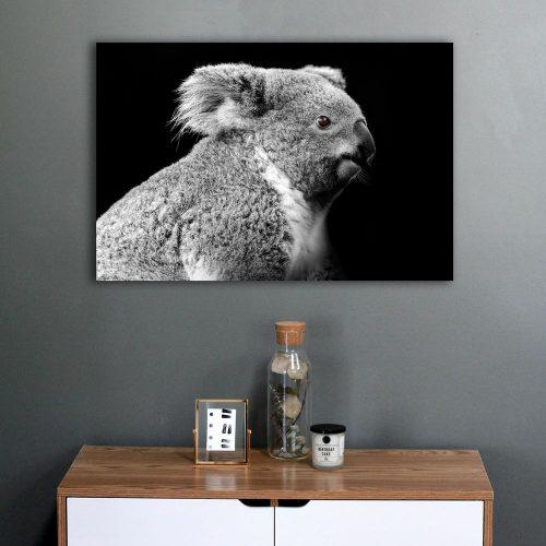 schilderij koala koalabeer