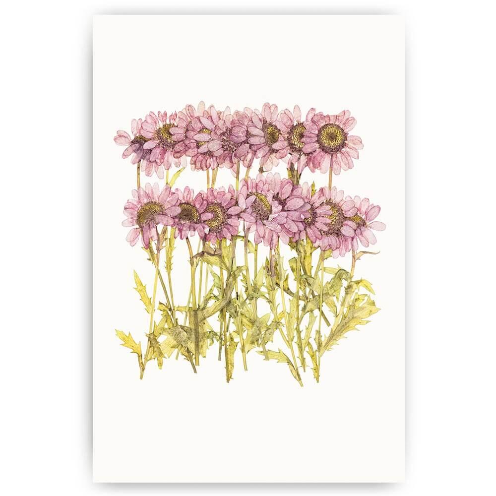 poster paarse bloemetjes