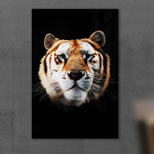 poster tijger kop