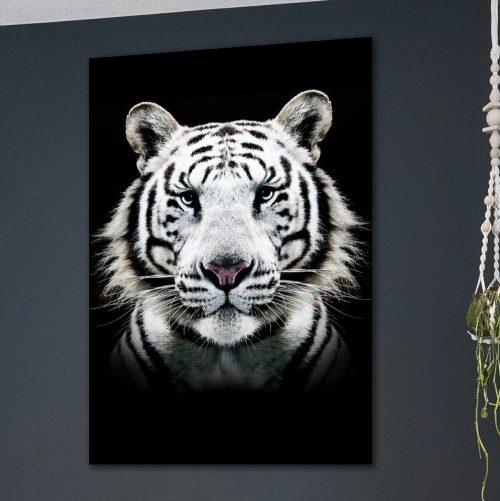 poster witte tijger