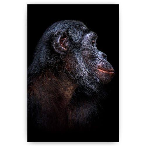 aap bonobo schilderij
