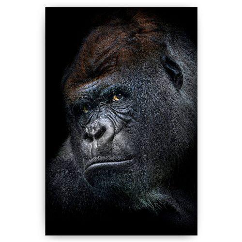 gorilla portret schilderij