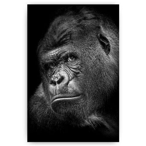 poster schilderij gorilla zwart wit