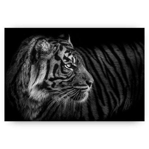 poster schilderij tijger zwart wit