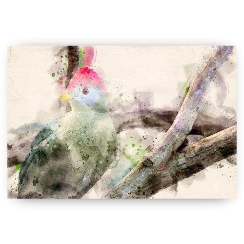 poster vogel waterverf