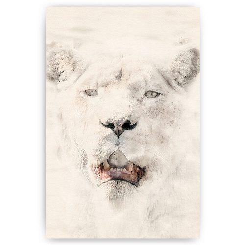 poster waterverf leeuwin