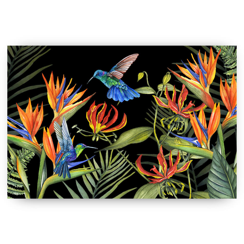 Tropische tuin kolibrie