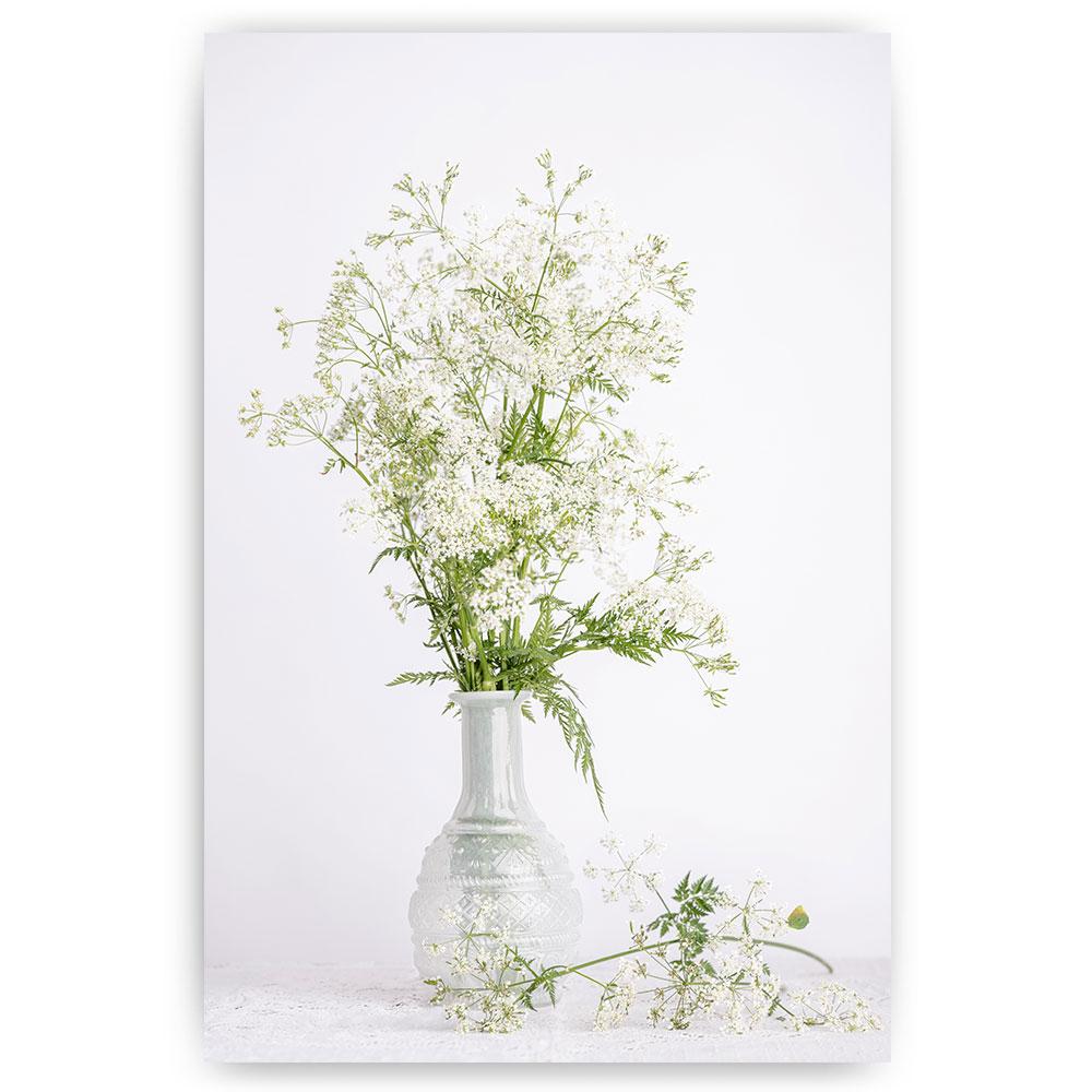 stilleven fluitenkruid bloemen